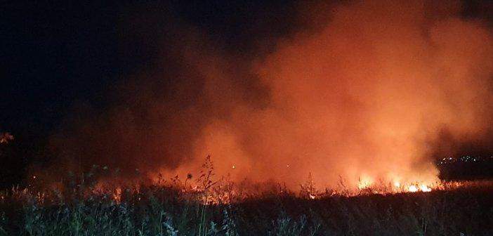 Αγρίνιο: Φωτιά ξέσπασε στα Αη Βασιλιώτικα – Κινητοποίηση της Πυροσβεστικής (εικόνες – βίντεο)