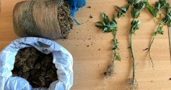 Βόνιτσα: Η Δίωξη πήγε σπίτι του και βρήκε δενδρύλλια και ποσότητα κάνναβης