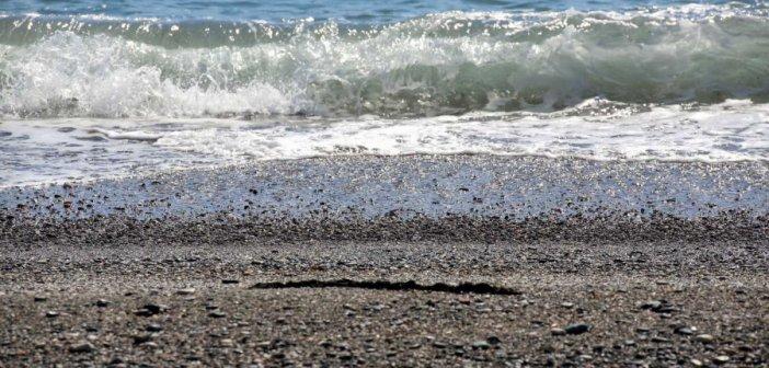 Βόλος: Θρίλερ με πτώμα γυναίκας στη θάλασσα – Ο άλυτος γρίφος πίσω από τις ανατριχιαστικές εικόνες