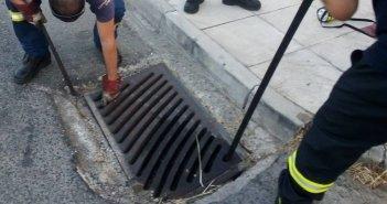 Αγρίνιο: Απίστευτη διάσωση γάτας από την Πυροσβεστική Υπηρεσία (ΔΕΙΤΕ ΦΩΤΟ)