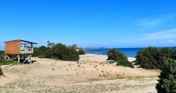 """Αιτωλοακαρνανία: Εθελοντική δράση καθαρισμού της παραλίας Λούρου στο πλαίσιο της δράσης """"Φύλακες της Φύσης"""""""