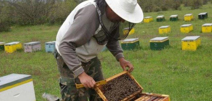 Αιτωλοακαρνανία: Ενίσχυση ανάλογη της απώλειας ζητούν οι μελισσοκόμοι