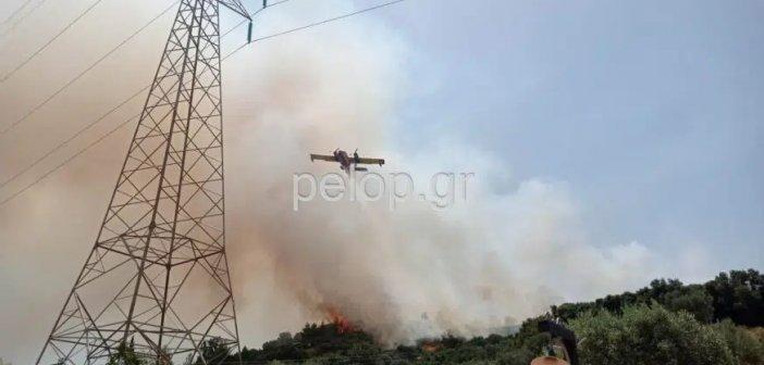 """Πάτρα: Οριοθετήθηκε η φωτιά στα Συχαινά – Εντολή εκκένωσης στον """"Προφήτη Ηλία"""""""