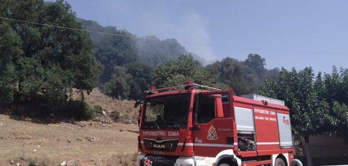 Χρυσοβίτσα Θέρμου: Πυρκαγιά στη θέση Διάσελο