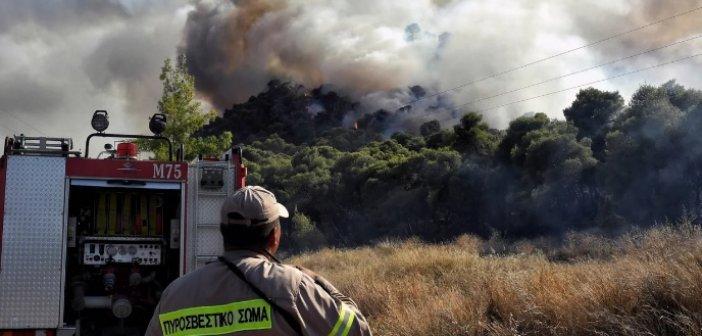 Καλύτερη εικόνα παρουσιάζει η φωτιά στην περιοχή Θυρίου