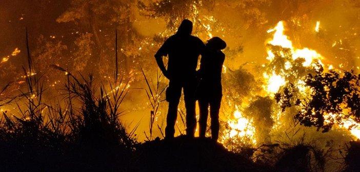 Φωτιά στην Εύβοια: κάηκε το 33% των δασών του νησιού