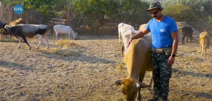 Η φάρμα του Σταύρου στο Ξηρόμερο Αιτωλοακαρνανίας (video)