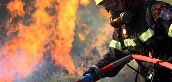 Φωτιά στην Ηλεία: Μάχη με τις αναζωπυρώσεις