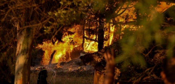 Μπαίνει τέλος στις ποινές με αναστολή για τους εμπρηστές δασών