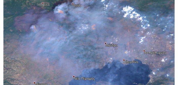 Φωτιά στα Βίλια: Το μέγεθος της καταστροφής από δορυφόρο – 75 χιλιάδες στρέμματα έγιναν στάχτη