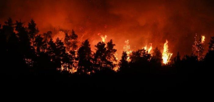 Οι πέντε παράγοντες των μεγάλων πυρκαγιών – Θα ξεσπούν όλο και πιο συχνά