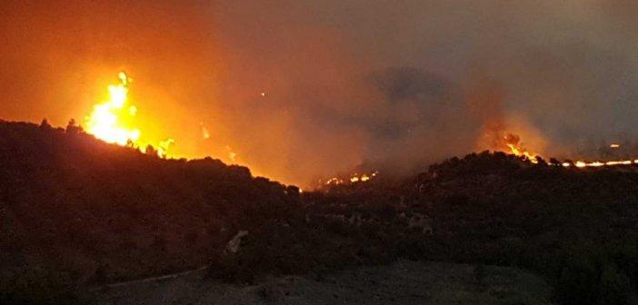 Φωτιά στην Ηλεία: Εγκλωβισμένοι 150 άνθρωποι στο χωριό Κλαδέος – Το νέο μήνυμα του 112