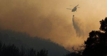 Αποκαλυπτική έκθεση για το φετινό καταστροφικό καλοκαίρι από τις δασικές πυρκαγιές