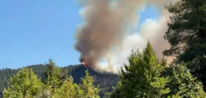 Πυροσβεστική: 39 δασικές πυρκαγιές το τελευταίο 24ωρο