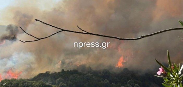 Αιτωλοακαρνανία: Υπό έλεγχο η φωτιά στο Παραδείσι – Ο ρόλος των εναέριων μέσω και της άπνοιας