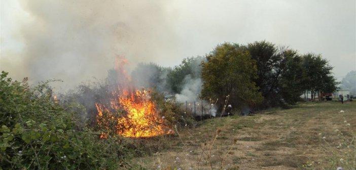 Δήμος Ναυπακτίας: Σε αυξημένη επιφυλακή για τον κίνδυνο εκδήλωσης πυρκαγιάς