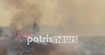 Φωτιά Αρχαία Ολυμπία: Εγκλωβισμένοι 4 κάτοικοι στα Βίλλια σε αγροικία