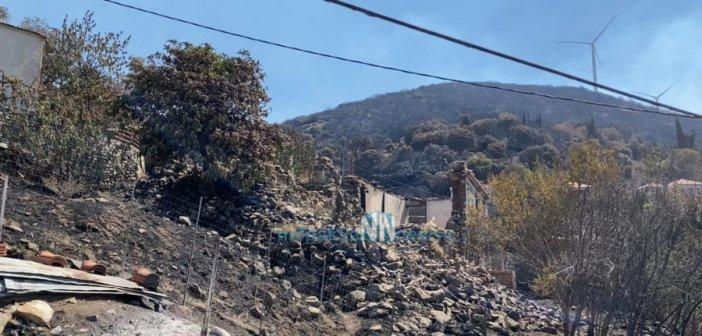 1 νεκρός και 12.600 στρέμματα στάχτης στη Φωκίδα