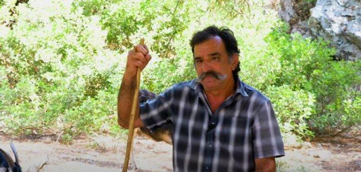 Στη στάνη του Παντελή στον Κάλαμο – Η ζωή στο νησί (video)