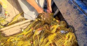 Βόλος: Έλυσε τη σιωπή του ο ψαράς που κατηγορείται ότι ξαναπέταξε στη θάλασσα το πτώμα ψαροντουφεκά