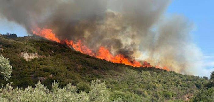 Φωτιά στη Σταμνά και την Αστροβίτσα Αιτωλικού (ΦΩΤΟ)