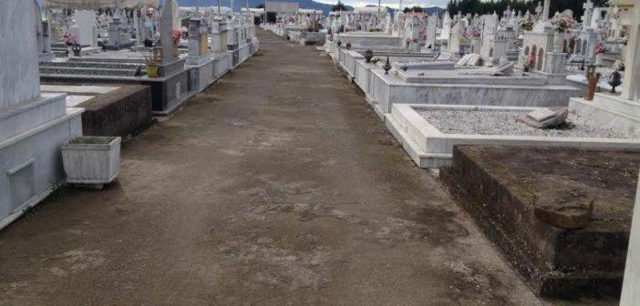 Αγρίνιο: Αποτρόπαιο θέαμα στο νεκροταφείο – Νεκρός σκύλος σε λίμνη αίματος (Προσοχή: σκληρές εικόνες)