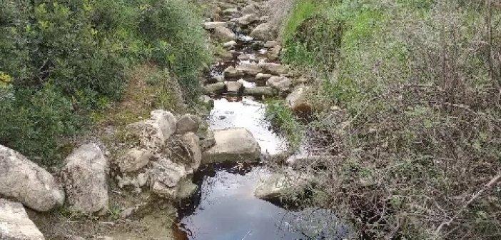 Αναγκαία η παρέμβαση των αρμοδίων, αν υπάρχει μόλυνση περιβάλλοντος
