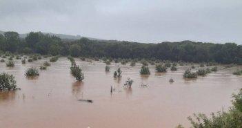 Μεσολόγγι: Σε απόγνωση και η Πεντάλοφος – Πλημμύρισαν στάβλοι και καλλιέργειες (Φωτό & Βίντεο)